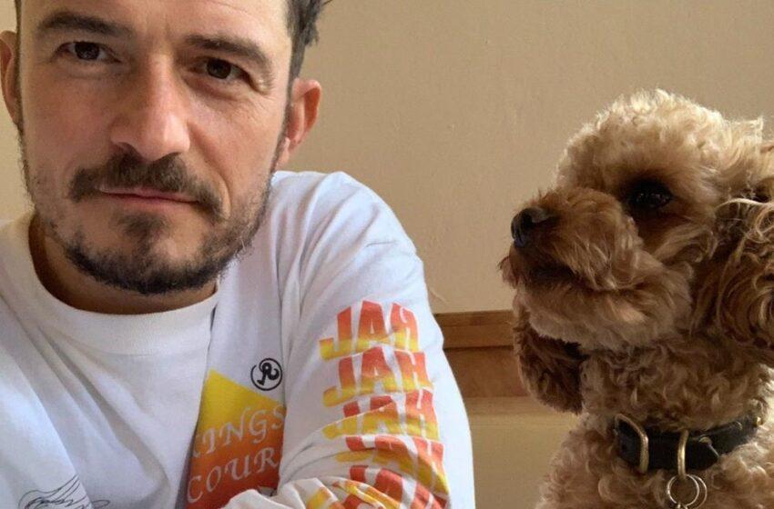 Orlando Bloom perde il cane e si tatua il suo nome sul cuore
