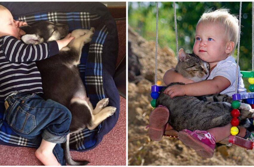 Le foto che dimostrano che ogni bimbo avrebbe bisogno di un animale domestico